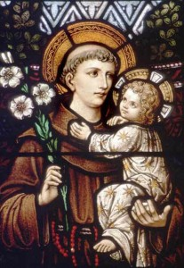 SH Website_St Anthony of Padua 2